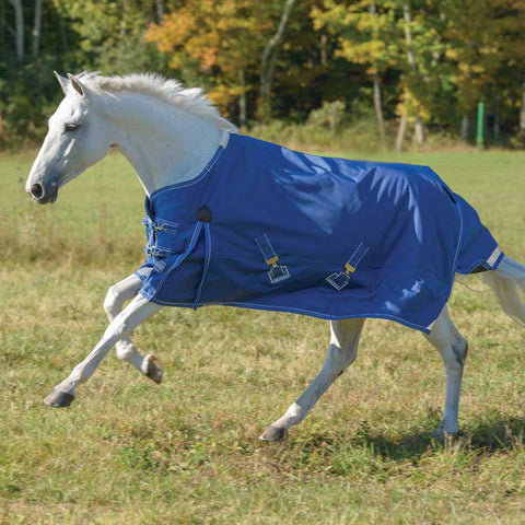Shires StormCheeta 200g Turnout Blanket in Navy