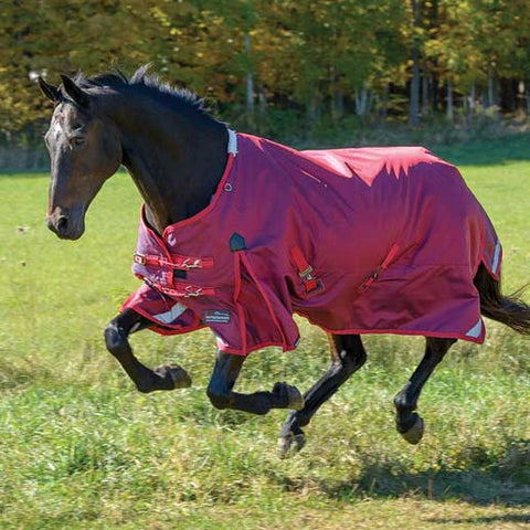 Shires StormCheeta 200g Turnout Blanket in Poppy