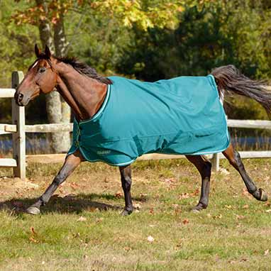 Shires Tempest Plus 100g Turnout Blanket