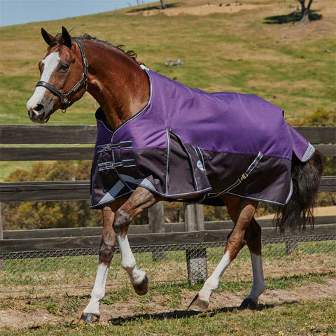 WeatherBeeta ComFiTec Plus Dynamic Medium Turnout Blanket