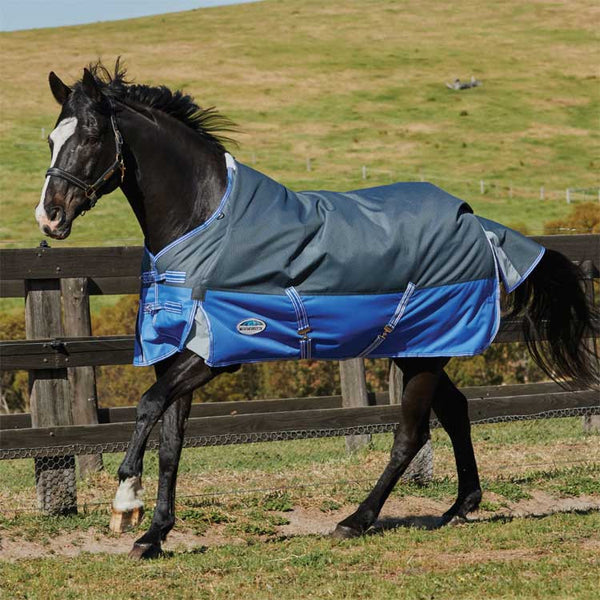 WeatherBeeta ComFiTec Premier Thinsulate Heavy Turnout Blanket