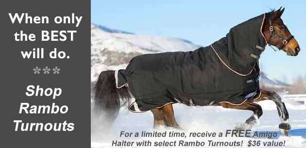 Sale on Winter Horse Blankets