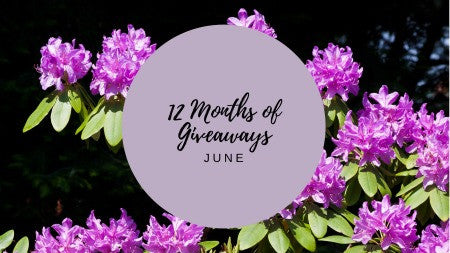 12 Months of Giveaways - June!
