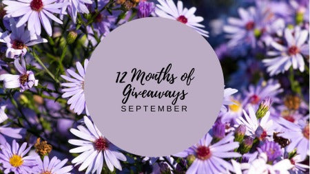 12 Months of Giveaways - September!