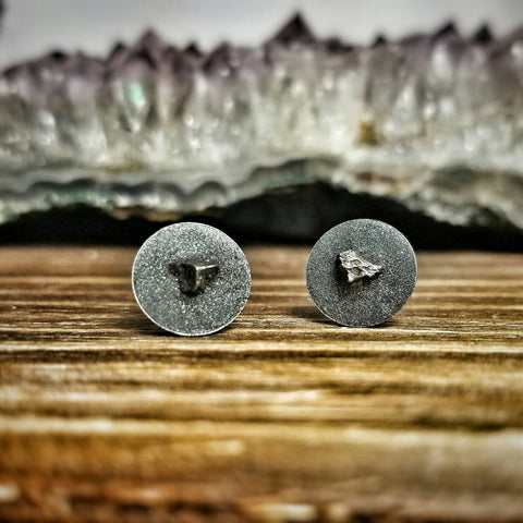 The Castor and Pollux - Meteorite Earrings