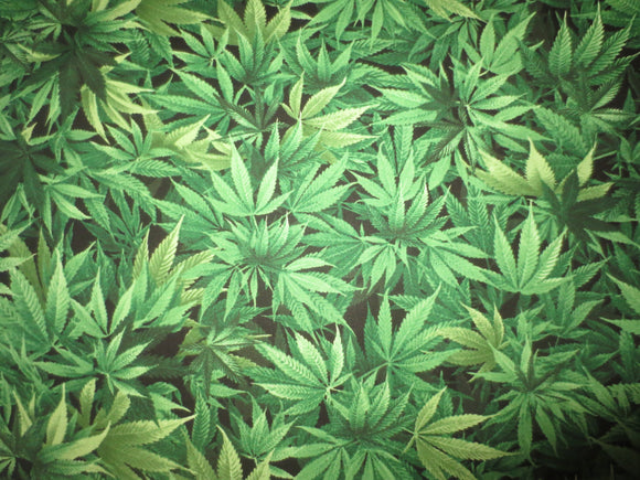 Marijuana cotton fabric