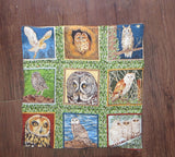 Owls 9 different species bird lovers set of 2 insulated reversible snack place mats choice of sets owl lovers
