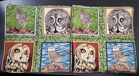 Owls mini mats different species bird lovers set of 2 insulated reversible snack mug rugs choice of sets owl lovers