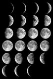 Living with Lunar Cycles with Jenn Pici Falk 1/5