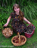 Mycopigments: A mushroom dyeing workshop 8/6