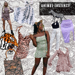 Animal Instinct Vision Board
