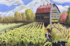 """The Burley Harvest"" by Kentucky artist, Kevin Osbourn"
