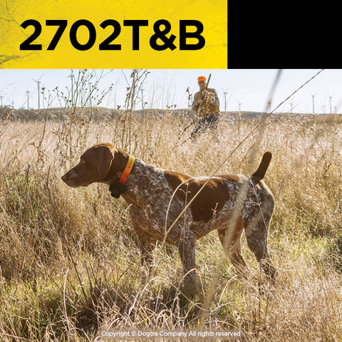 Dogtra 1-Mile 2-Dog Training and Beeper Collar System 2702T&B