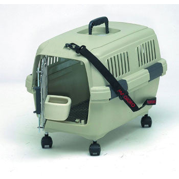 Marchioro Clipper Cayman 2 Beige/Green - Peazz Pet