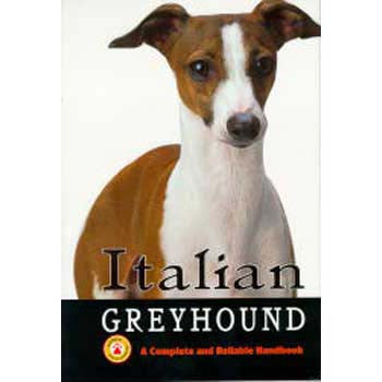 Italian Greyhounds - Peazz Pet