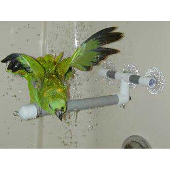 Window And Shower Perch Large -Peazz Pet