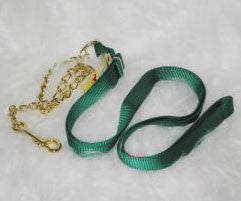 Nylon Lead with Chain & Snap - Green 7 FT (17D24 GN) - Peazz Pet