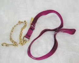 Nylon Lead with 24 Chains & Snap - Wine 7 Feet (17D24 WN) - Peazz Pet