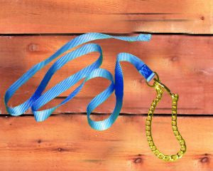 S/T Nylon Lead w/ Chain & Snap - Berry 7 Feet (17D24 BY) - Peazz Pet