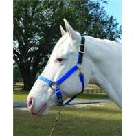 3-5 Adjustable Horse Halter with Leather Headpole - Blue Yearling (1DALSS YRBL) - Peazz Pet