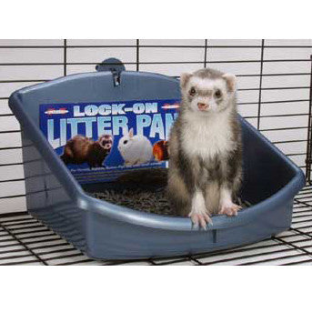 Marshall Lock - on Litter Pan (FP-266) - Peazz Pet