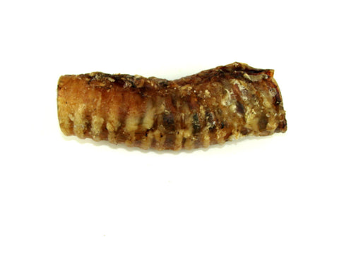 "20 Pack Beef Trachea 6"" - Peazz Pet"