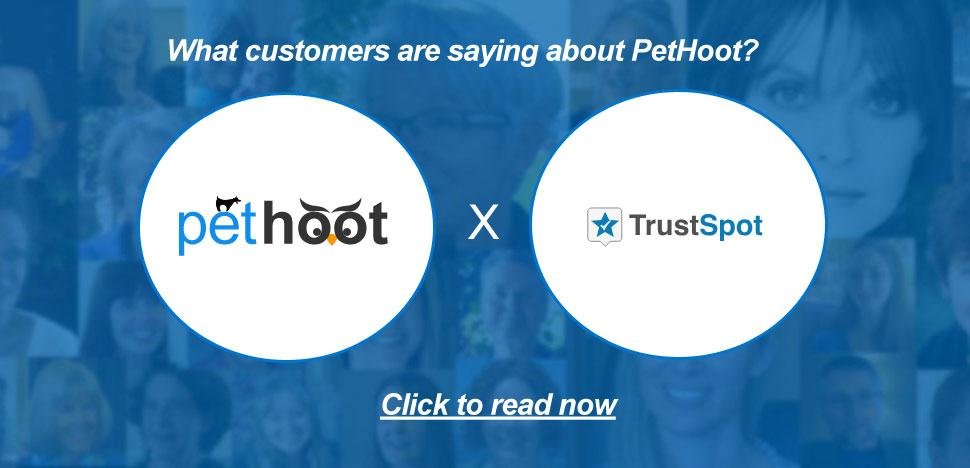 PetHoot Customer Testimonials via TrustSpot