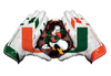 Miami Hurricanes Flippy Magz U Gloves Reversible Magnet - CanesWear at Miami FanWear Decals & Stickers Flippy Magz CanesWear at Miami FanWear