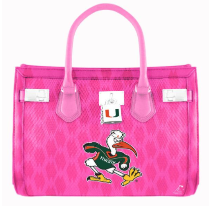 Miami Hurricanes Flippy Magz Purse Reversible Magnet - CanesWear at Miami FanWear Decals & Stickers Flippy Magz CanesWear at Miami FanWear