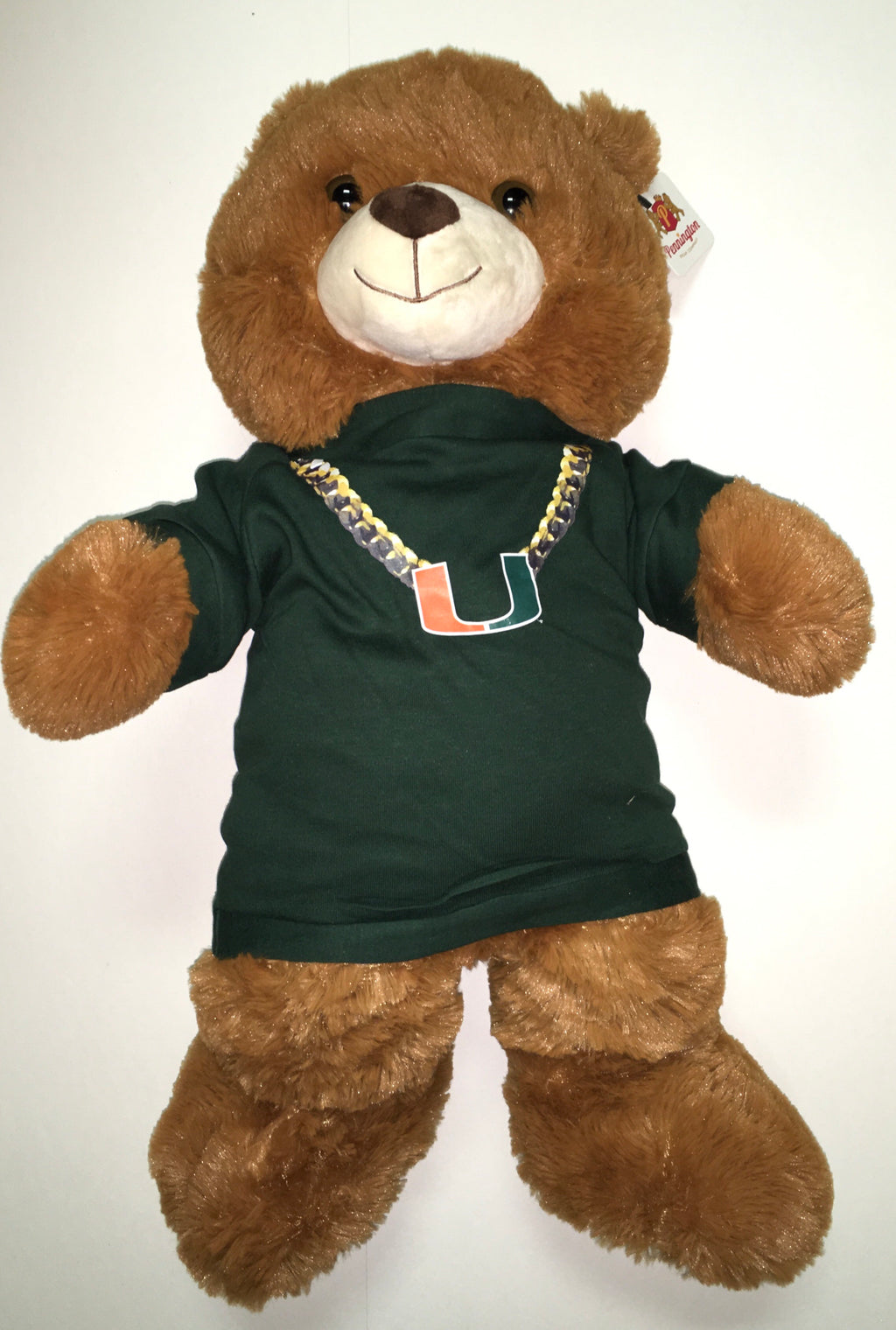 "Miami Hurricanes 24"" Plush Turnover Chain Bear - Green"