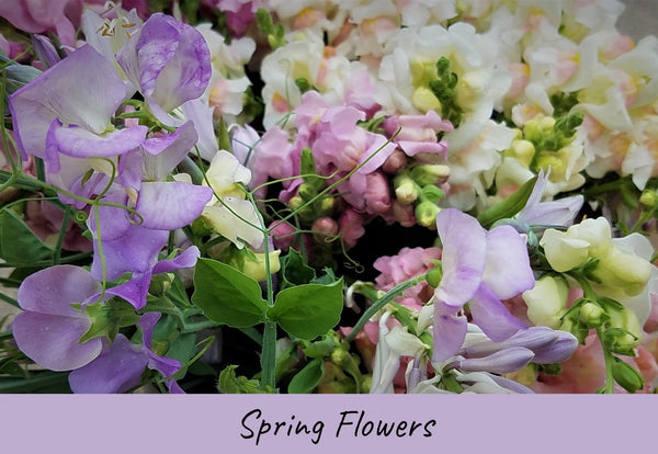 Spring Flowers at Five Petal Farm