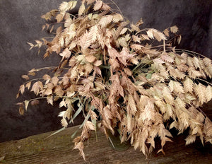 Five Petal Farm Dried Sea Oats