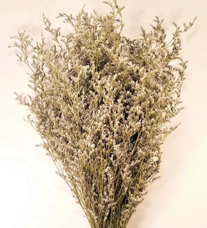 Dried Limonium, Dried German Statice, Dried Caspia