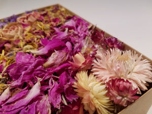 Large Dried Flower Sampler Kit