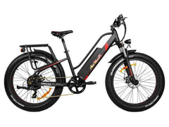 Addmotor MOTAN M-450 500 WATT 48V Step Through Full Suspension Fat Tire Electric Bike Black New