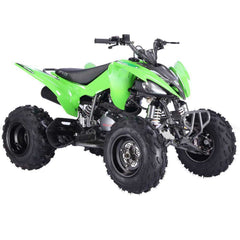 Vitacci Pentora 250cc 4 Speeds with reverse CARB Compliant Racing ATV Green New