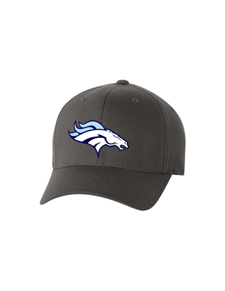 Broncos Flexfit Hat