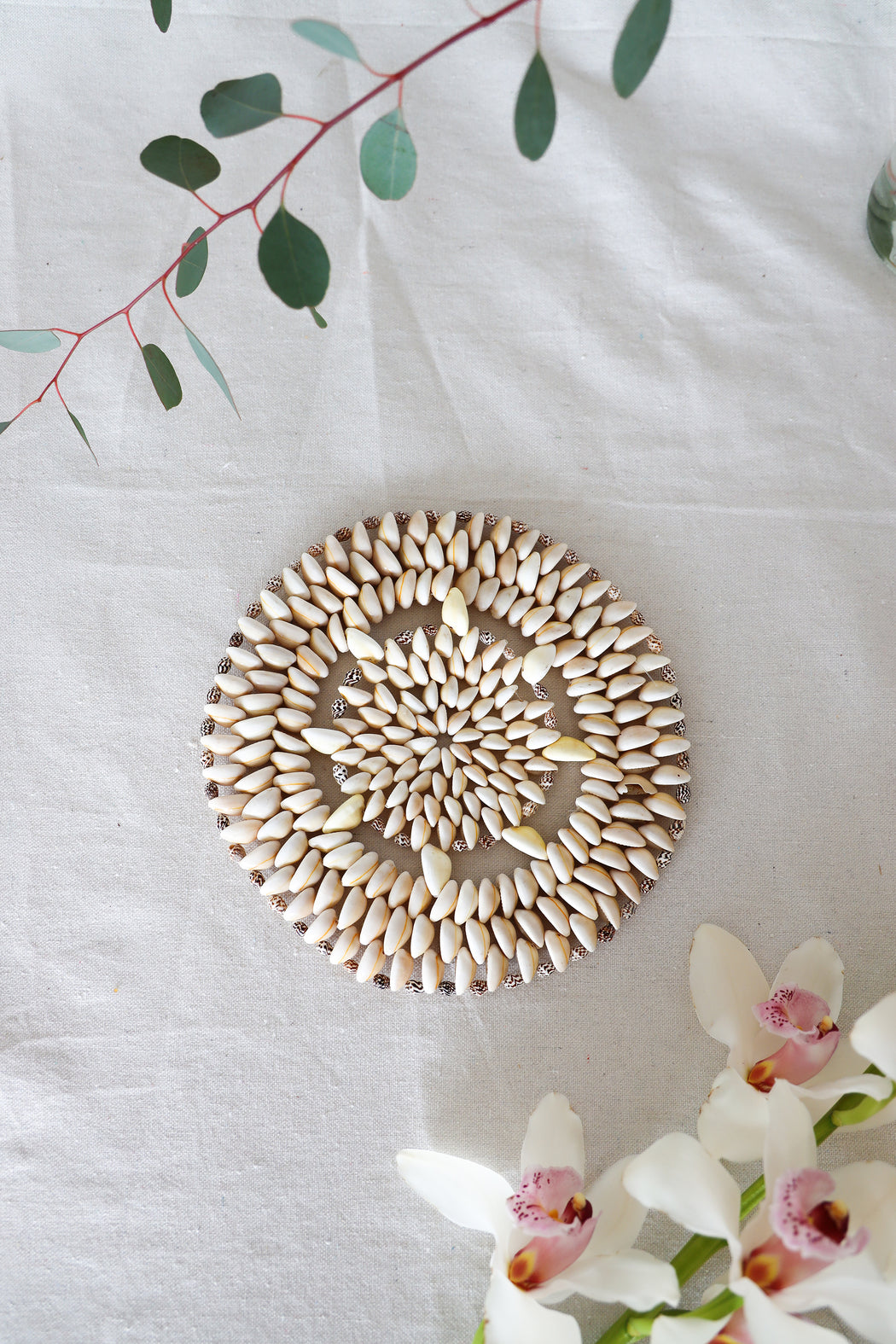 Circle of Life Cowrie Shell Plate Warmer