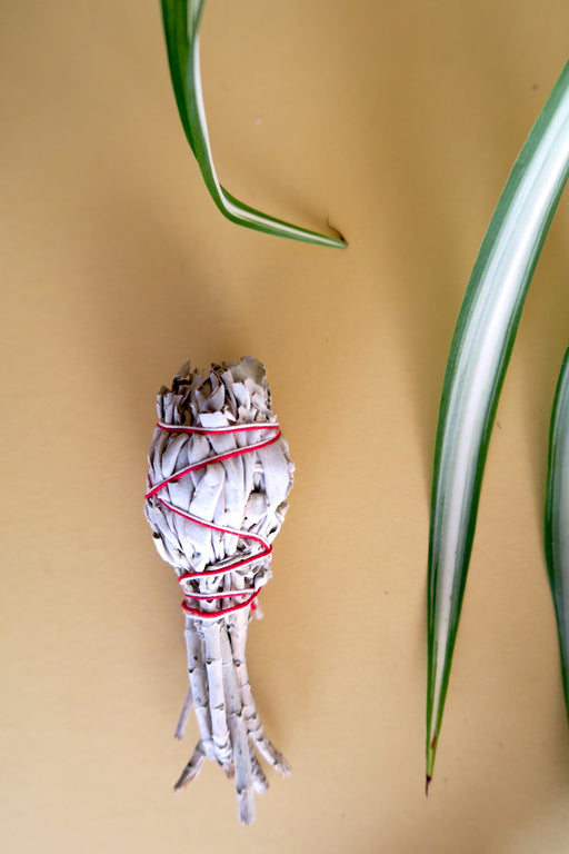 Sage Smudge Stick - Small Wand