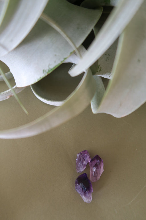 Mini Amethyst Crystal Point Trio Set