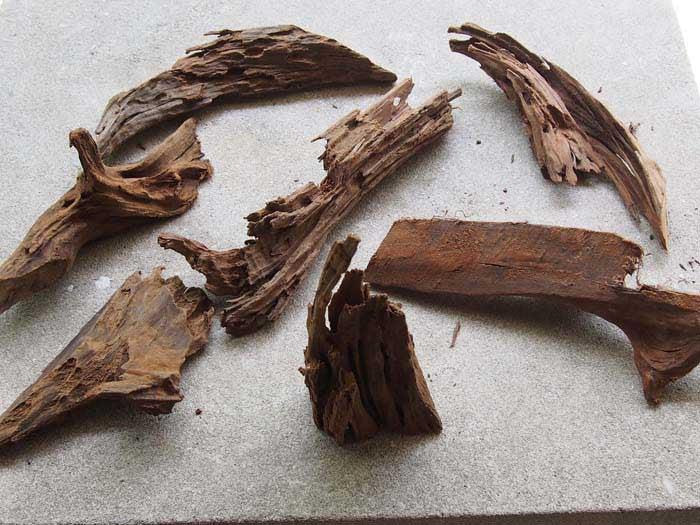 Malaysian Driftwood - 1 Small Piece (6 - 10 inches)