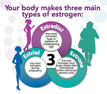 What Is Estrogen And What Does It Do?