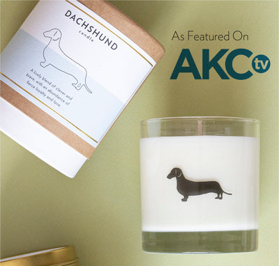 Scripted Fragrance As Featured on AKC.TV