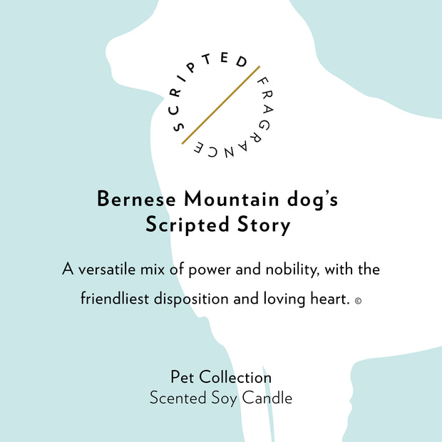 Bernese Mountain Dog Breed Soy Candle in Large Luxe Gold Tin