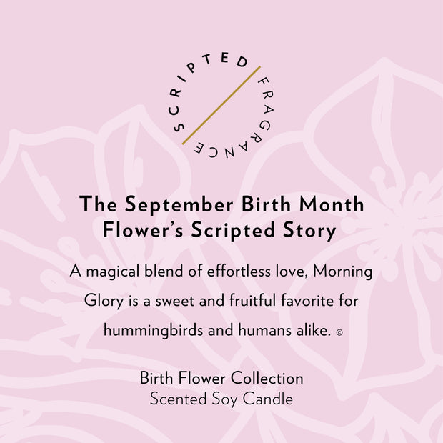 September Birth Month Flower Soy Candle in Signature Silhouette Glass