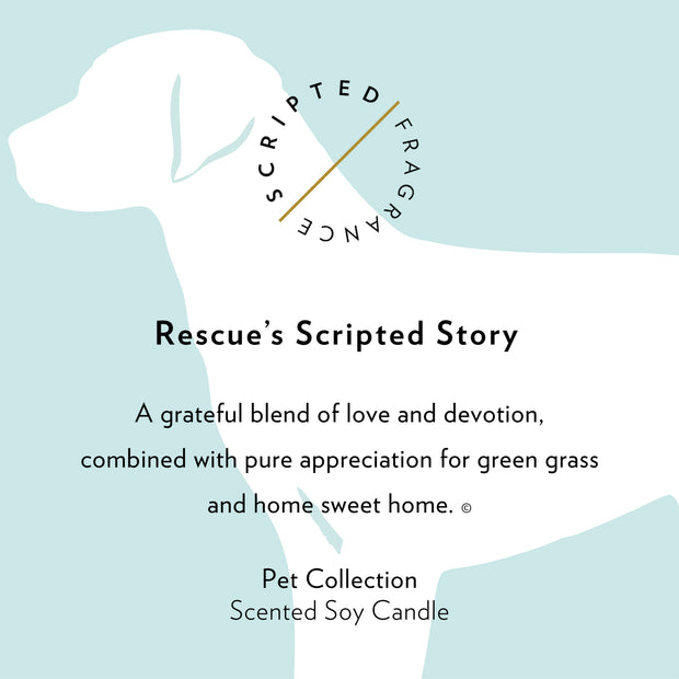 Rescue Dog Soy Candle in Large Luxe Gold Tin