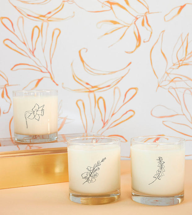 March Birth Month Flower Soy Candle with Signature Silhouette Glass