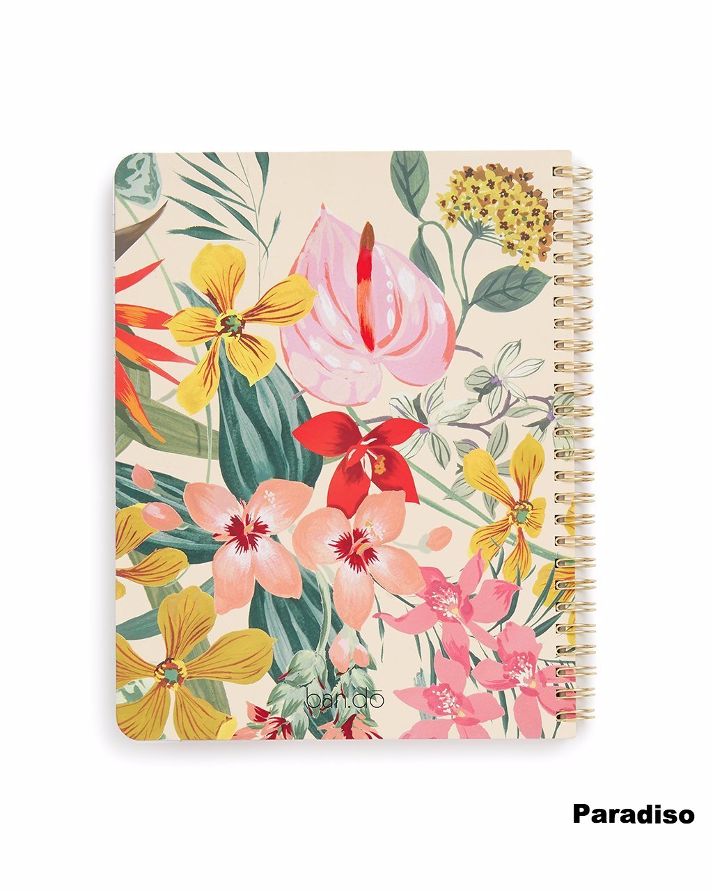 Rough Draft Mini Notebook