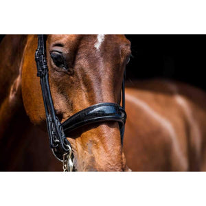 PS of Sweden All In Double Bridle