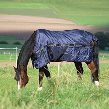 Equiline Dakota Turnout Rug